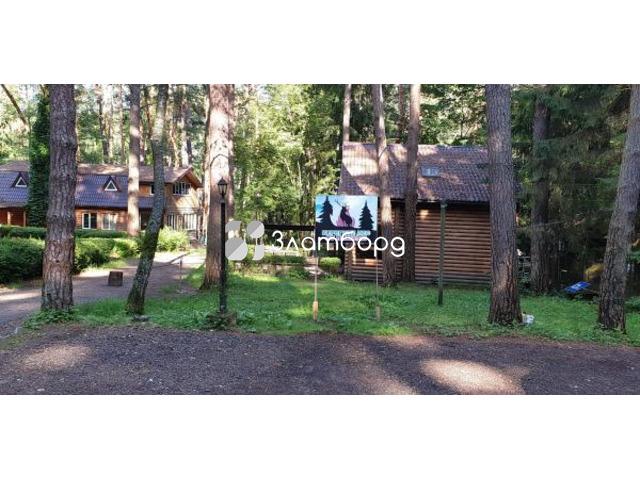 База отдыха на лесном участке на берегу Оки, Калужская область